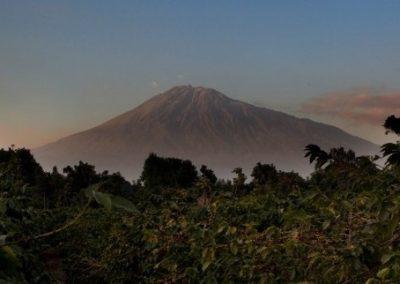 Views of Mount Meru at Arusha Camp