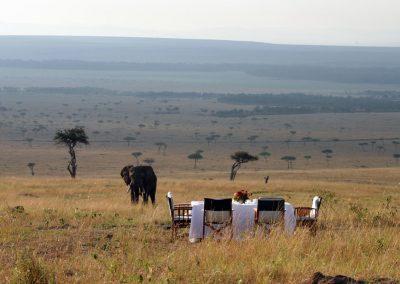 Bush breakfast whilst watching Africa's friendly giants
